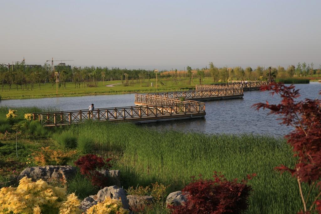 生态湖一角