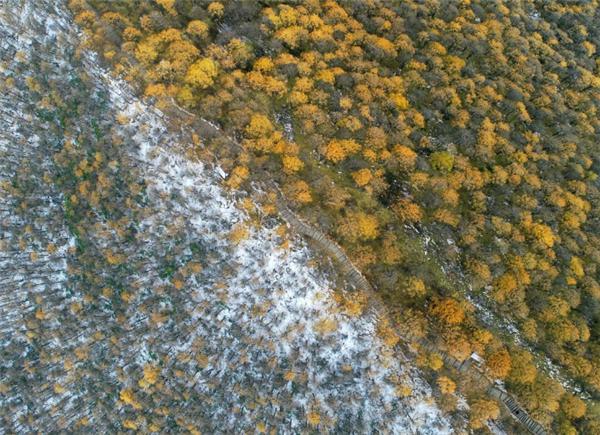 秋冬分界线