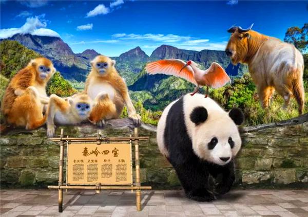 【珍爱秦岭 保护家园】关爱秦岭保护濒危动物