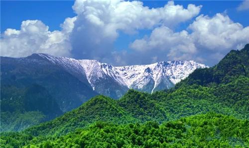保护秦岭 | 绿芯秦岭 生态大成